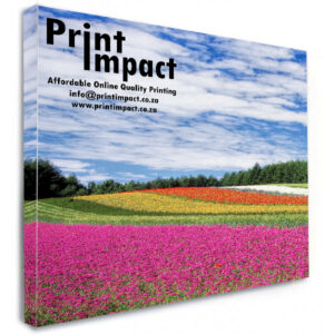 Canvas Stretching is Printed in high resolution on artists Canvas and then block mounted.